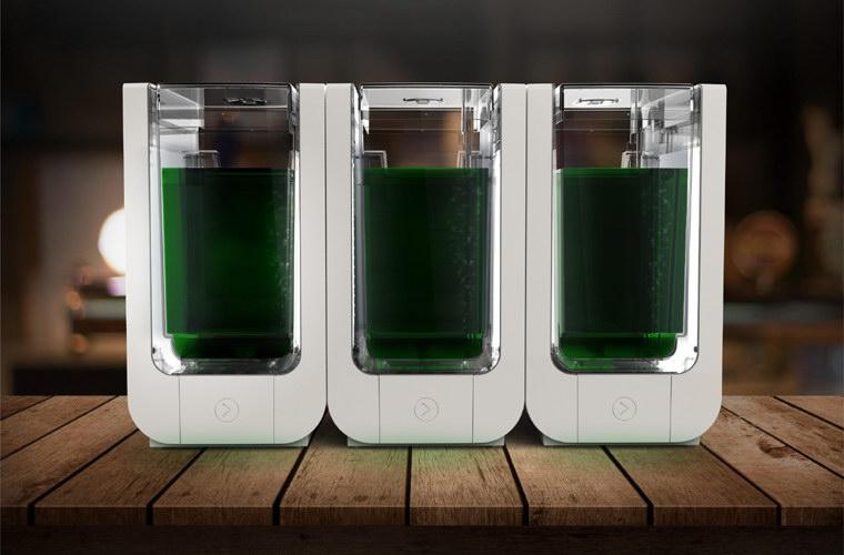 alg-and-you BLOOM-consumer design for startup spiruline